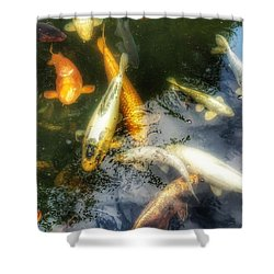 Reflections And Fish 7 Shower Curtain by Isabella F Abbie Shores FRSA