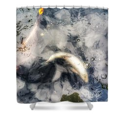 Reflections And Fish 8 Shower Curtain by Isabella F Abbie Shores FRSA