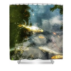 Reflections And Fish  Shower Curtain