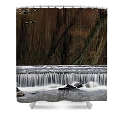 Reflections And Water Fall Shower Curtain by Dorin Adrian Berbier