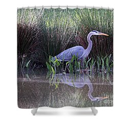 Reflections At Nassau Grove Shower Curtain by Allan Levin