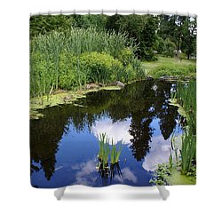 Shower Curtain featuring the photograph Reflections by Ben Upham III