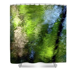 Reflections Shower Curtain by Betsy Zimmerli