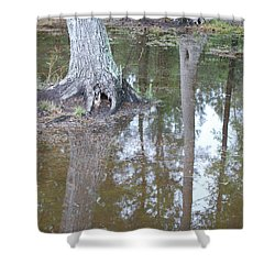 Reflections Shower Curtain by Gordon Mooneyhan
