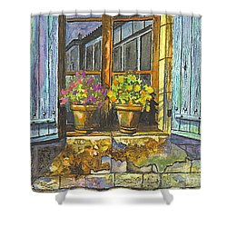 Shower Curtain featuring the painting Reflections In A Window by Carol Wisniewski