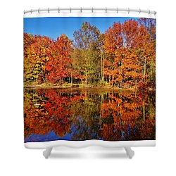 Shower Curtain featuring the photograph Reflections In Autumn by Ed Sweeney