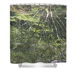 Reflections In The Japanese Gardens Shower Curtain