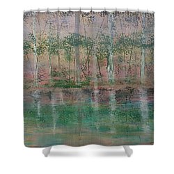Shower Curtain featuring the painting Reflections In The Mist by Judi Goodwin