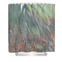 Reflections Shower Curtain by Linda Geiger