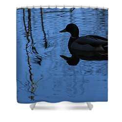 Reflections Of A Duck Shower Curtain by John Rossman