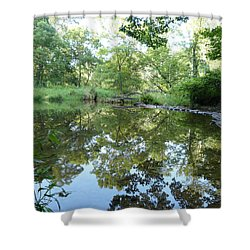 Reflections Of Beetree Run Shower Curtain by Donald C Morgan