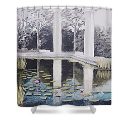 Reflections Of Days Of Future Past Shower Curtain