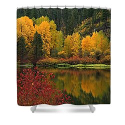 Reflections Of Fall Beauty Shower Curtain by Lynn Hopwood