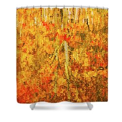 Reflections Of Fall Shower Curtain by Rick Furmanek
