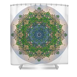 Reflections Of Life Mandala Shower Curtain