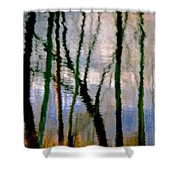 Reflections Of The Forrest Shower Curtain by Gillis Cone