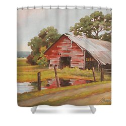 Reflections Of The Past Shower Curtain by Todd Baxter
