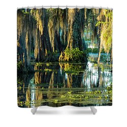 Reflections Of The Times Shower Curtain by Kimo Fernandez
