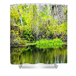 Shower Curtain featuring the photograph Reflections On A Beautiful Day by Madeline Ellis
