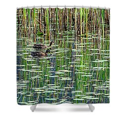 Reflections On Duck Pond Shower Curtain by Sharon Talson