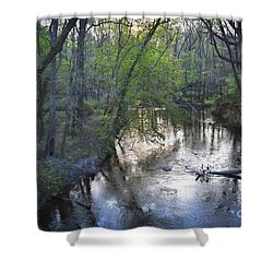 Shower Curtain featuring the photograph Reflections On The Congaree Creek by Skip Willits