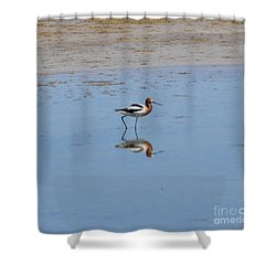Reflections On The Great Salt Lake Shower Curtain