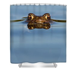 Reflections - Toad In A Lake Shower Curtain
