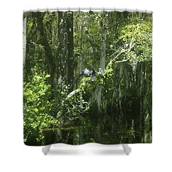 Reflections Upon The Swamp Shower Curtain
