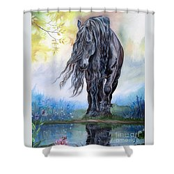 Reflective Beauty Shower Curtain