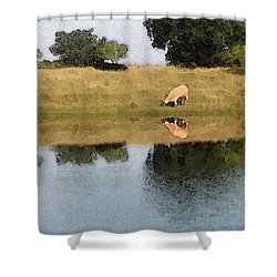 Reflective Cow Shower Curtain