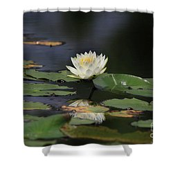 Reflective Lilly Shower Curtain by Deborah Benoit
