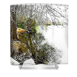 Reflective Trees Shower Curtain