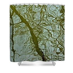 Reflets Feeriques 1 Shower Curtain