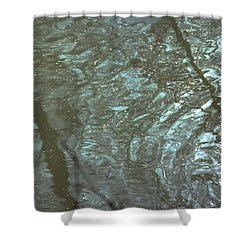Reflets Feeriques 2 Shower Curtain