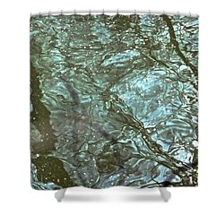 Reflets Feeriques 3 Shower Curtain