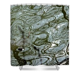 Reflets Feeriques 5 Shower Curtain