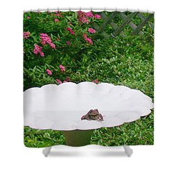 Shower Curtain featuring the digital art Refreshing by Barbara S Nickerson