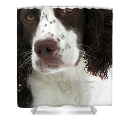 Regal  Shower Curtain by Angie Rea
