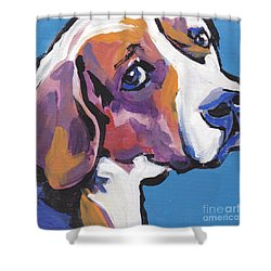 Regal Beagle Shower Curtain by Lea S
