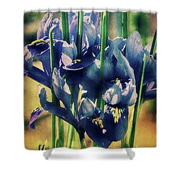 Shower Curtain featuring the photograph Regal Splendour  by Connie Handscomb