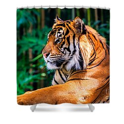 Regal Tiger Shower Curtain