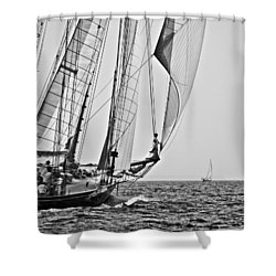 Regatta Heroes In A Calm Mediterranean Sea In Black And White Shower Curtain