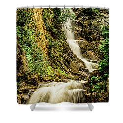 Reid Falls Shower Curtain