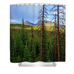 Reids Peak Shower Curtain by Chad Dutson