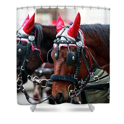 Reindeer Horses Shower Curtain