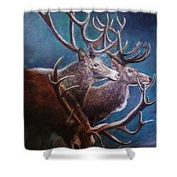 Reindeers Shower Curtain