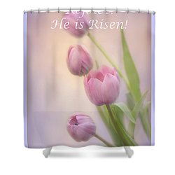 Shower Curtain featuring the photograph Rejoice He Is Risen by Ann Bridges