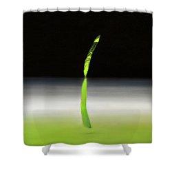 Relativity  Shower Curtain by Antonio Ortiz