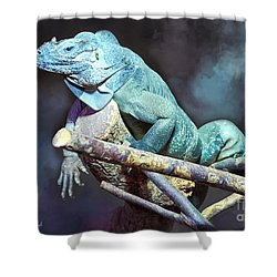 Shower Curtain featuring the photograph Relaxation by Jutta Maria Pusl