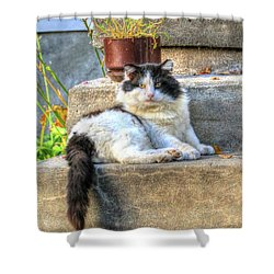 Relaxing On The Stairs Shower Curtain